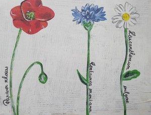 fleurs-tableau