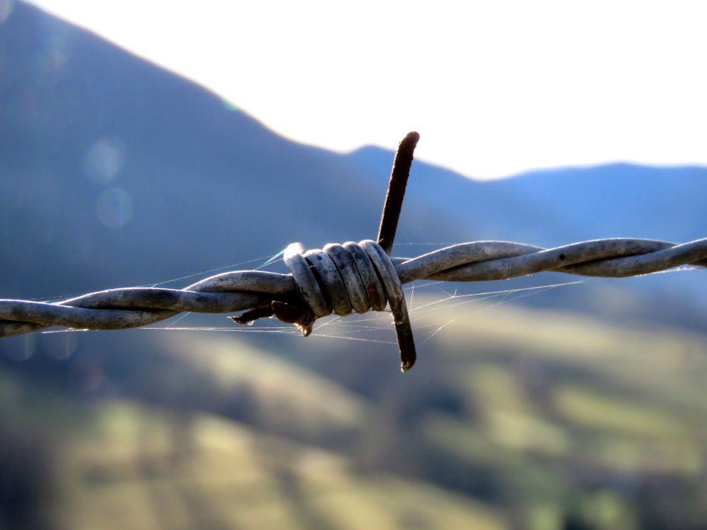 photographie-fil-de-fer-montagne